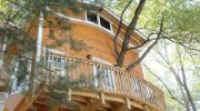 Дедушка решил помочь своим внукам и построил на дереве целый трехэтажный особняк