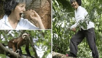 Женщине пришлось жить в лесу с обезьянами 10 лет