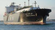 Смелый моряк прыгнул с 12-метровой палубы, чтобы спасти кита, запутавшегося в сетях