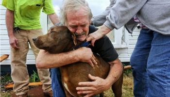 Потратив накопленные за всю жизнь деньги, мужчина спас больную собаку