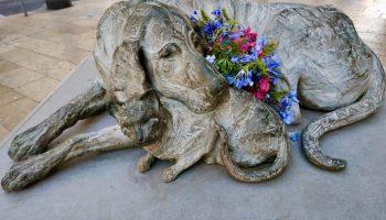 Монумент «Бродячие» — памятник милосердию животных и человеческому эгоизму