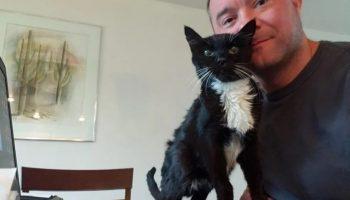Мужчина помог старому, 18-летнему коту, которого оставили в приюте