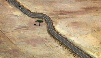 Потрясающие фото доказательства того, как правильно относиться к природным богатствам
