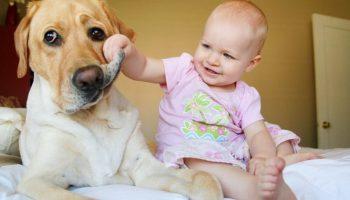 Доброта в мире живет в маленьких сердцах: самые добрые и самые милые фотографии детей с животными