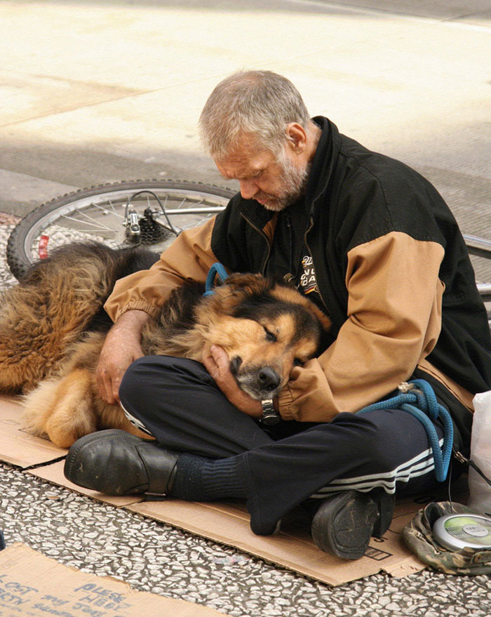 homeless-dogs-unconditional-love-best-friend-33__700