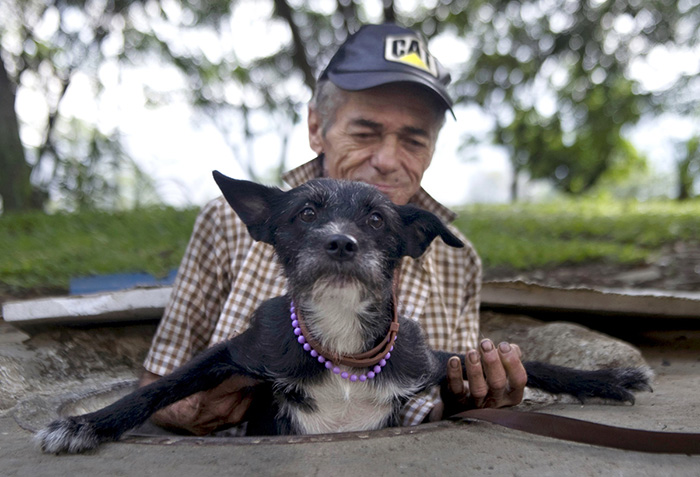 homeless-dogs-unconditional-love-best-friend-35__700