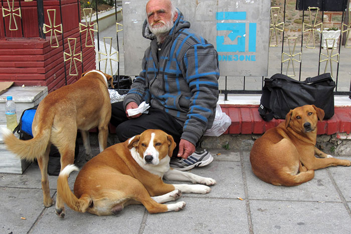 homeless-dogs-unconditional-love-best-friend-49__700